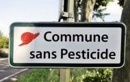 """Les communes françaises en chemin vers le """"zéro phyto"""""""