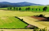 """Terres agricoles périurbaines: les Safer appellent à éviter le """"gaspillage"""""""