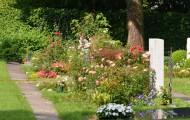 Les cimetières intercommunaux, des éléments importants pour l'environnement