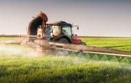 Bretagne : un maire devant la justice pour avoir interdit les pesticides près des habitations