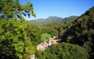 Motivation de l'exercice du droit de préemption dans les espaces naturels sensibles