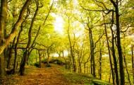 Commission départementale de la préservation des espaces naturels, agricoles et forestiers