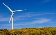 Éolien : le schéma régional breton annulé par la justice
