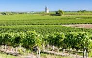 La Gironde, département le plus écologique de France