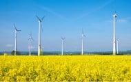 Loi prévention des risques : simplification du régime ICPE des éoliennes
