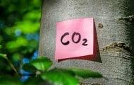 Climat : les collectivités peuvent être accompagnées par la démarche de labellisation Cit'ergie