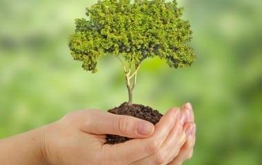 Nouveaux plans climat-air-énergie territoriaux : le dispositif juridique est en place