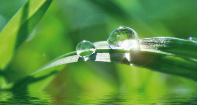 Le Sénat maintient l'eau et l'assainissement dans les compétences optionnelles des communautés de communes