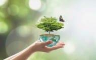 Capitale française de la biodiversité 2017 : clôture du concours le 2 mai