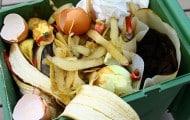 Paris a démarré la collecte séparée des déchets alimentaires chez les habitants