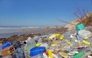 Plus de 60 000 T de déchets sauvages abandonnés en 2016