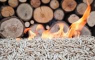 Chauffage urbain : la biomasse utilisée en Île de France