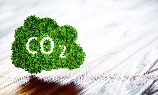 Le plan climat vise la neutralité carbone dans trente ans