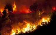 Réchauffement,urbanisme : en Méditerrannée la forêt n'a pas fini de brûler