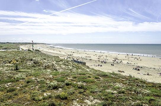 Défense du littoral contre la mer et sites classés : anticiper les précautions