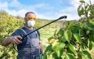 La MSA lance une grande étude sur l'état de santé des agriculteurs