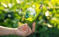 Premiers contrats de transition écologique négociés à Arras et en Corrèze