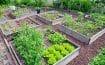 Comment garantir un approvisionnement local et de qualité dans le domaine des espaces verts ?