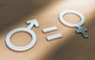 Des indicateurs territoriaux pour mesurer l'égalité femmes-hommes en France