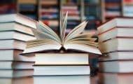 Le ministère de la Culture actualise son vade-mecum sur l'achat public de livres à destination des bibliothèques