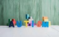 Le décret créant un délégué interministériel à l'autisme publié au JO