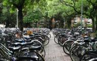 Vélo : le club des Villes cyclables appelle l'État à l'action