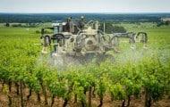 Pesticides : audit en Alsace et en Bretagne par un service de l'UE