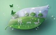 Réchauffement climatique : le WWF France appelle à une transformation profonde des modes de vie urbains