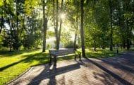 Belfort ouvre un jardin public cultivable et accessible