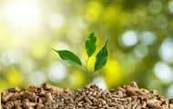 La chaleur renouvelable ne veut pas être l'oubliée de la transition énergétique