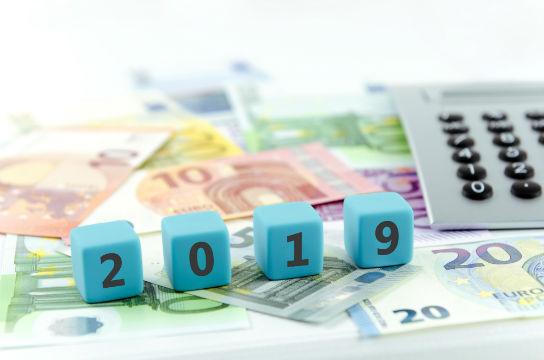 Le Conseil constitutionnel valide la loi de finances pour 2019