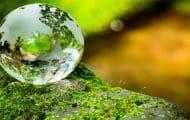 Restaurer l'environnement : quand les solutions deviennent problèmes