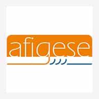 AFIGESE
