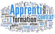 Apprentissage : la réforme des centres de formation sur les rails