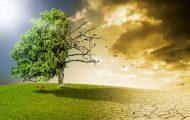 Adaptation au changement climatique : la France doit faire plus