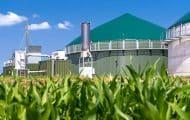 Le gaz vert, un vrai rôle à jouer dans la transition énergétique
