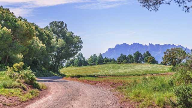 Les communes ont-elles l'obligation d'entretenir les chemins ruraux ?