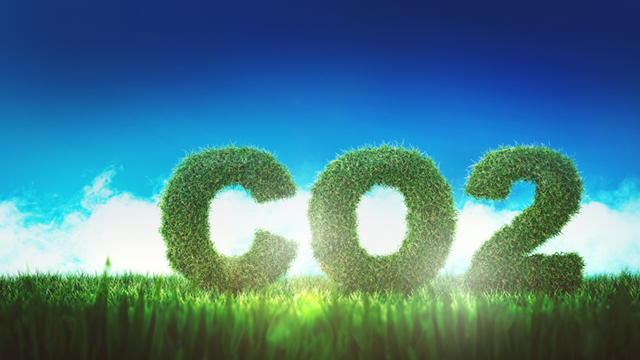 Quelles sont les modalités de prise en compte du bilan carbone dans les procédures d'attribution des marchés ?