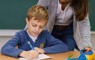 Handicap à l'école : le lourd défi des accompagnants