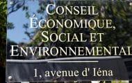 Le Conseil économique, social et environnemental préconise d'améliorer le processus des études d'impact