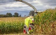 Les territoires peuvent demander un soutien pour leurs projets alimentaires