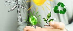 Comment devenir une organisation écoresponsable sur le plan énergétique ?