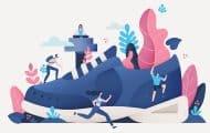 Les premières « Maisons Sport-Santé » bientôt reconnues