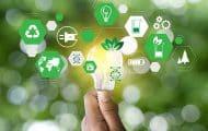 Municipales : l'Ademe propose aux candidats des solutions pratiques pour la transition écologique