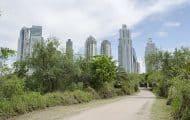 Développer la biodiversité urbaine