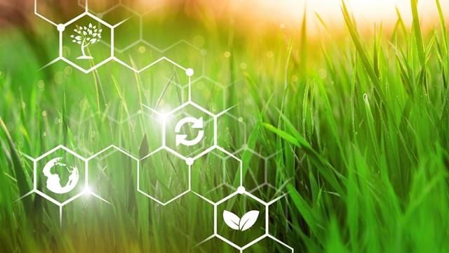 Environnement et agriculture en tête des préoccupations pour l'après-crise