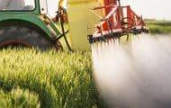 Épandage : les maires anti-pesticides saisissent de nouveau le Conseil d'État