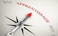 Apprentissage : le CNFPT financera 50 % des frais de formation des apprentis employés par les collectivités