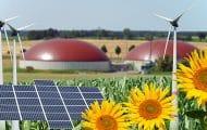 L'agriculture doit contribuer plus à la production d'énergies renouvelables