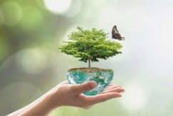 Crise sanitaire et biodiversité et s'il était enfin temps d'agir